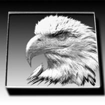coaster acrylic eagle210